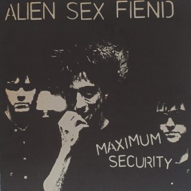 Maximum Security LP
