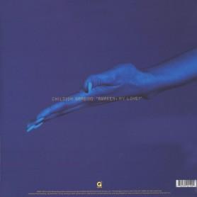 Awaken, My Love! LP