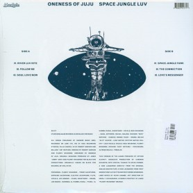 Space Jungle Luv LP
