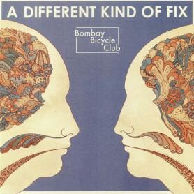 A Different Kind Of Fix LP