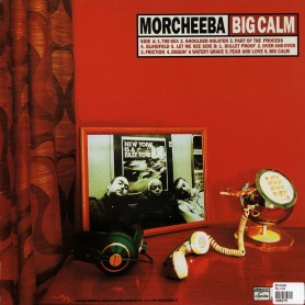 Big Calm LP